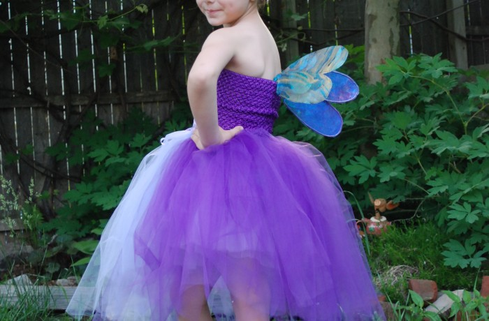 Fairy Wings- Dragonfly $25 and up